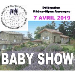 Baby-show - le 7 avril 2019...
