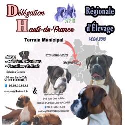 14/04/2019 - Régionale...